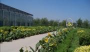宜山现代农业休闲观光园