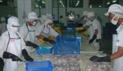 水产品保鲜冷冻深加工基地