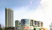 石河子电子商城建设项目