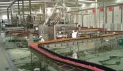 武威黄羊工业园区年产10000吨鲜榨葡萄汁