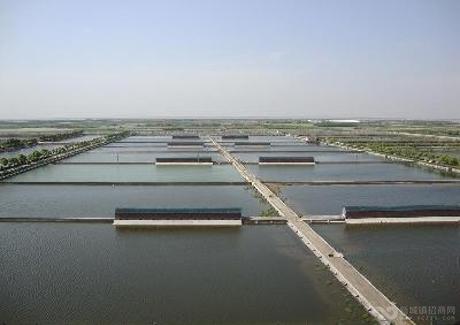 湖南衡阳市衡南畜禽水产品深加工基地项目