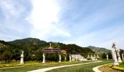 宝鸡市法门寺佛文化景区开发项目