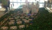 广西防城港市五星级酒店整体转让