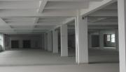 慈东工业区、占地15亩标准厂房