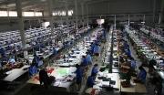 湖南邵阳牛羊皮革扩大生产项目