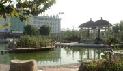 山东济南历城区900亩工业用地整体转让