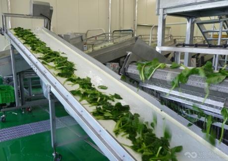 河南南陽果蔬保鮮加工生產線