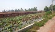 朱湖湿地公园综合服务区
