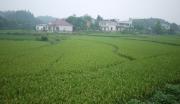 浏阳捞刀河产业制造基地