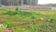 通山县经济开发区B4地块