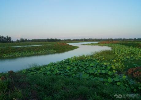 湖北孝感朱湖旅游观光项目实景图