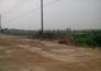 黄冈市黄州区现代农业科技示范园实景图