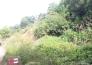 黄石市城际高铁以东地块实景图