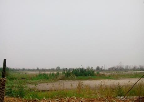 黄冈南湖工业园实景图