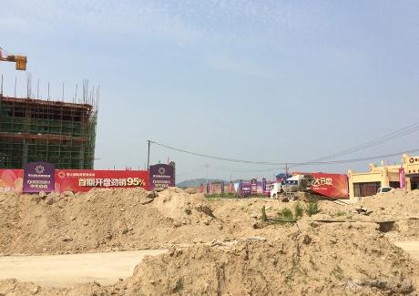大悟鄂北国际商贸物流城实景图