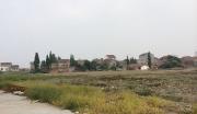 荆门市漳河新区通用航空产业园建设项目