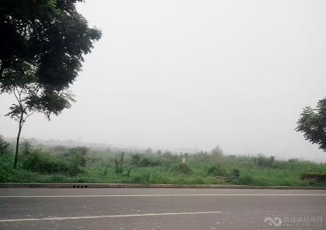 桃子冲片区物流园项目实景图