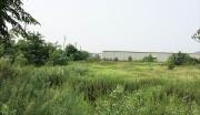 随州生物医药产业园建设项目