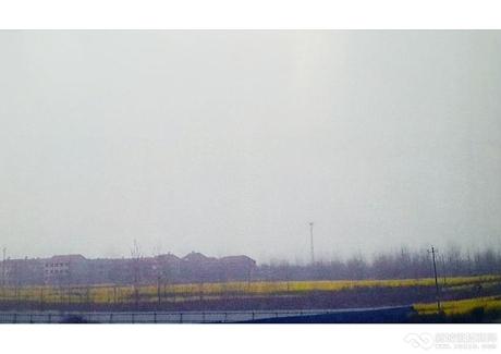 武穴市20号路东地块实景图