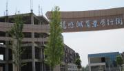 龙感湖工业园综合服务中心开发项目