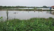 龙感湖生态农业观光园项目