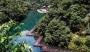 长江牯牛沙洲湿地生态观光旅游项目