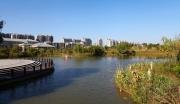 戴庄路东、盐塘河北侧地块