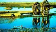 榆中县青城镇东滩湿地公园项目
