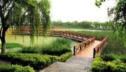 湖北武汉长江湿地公园