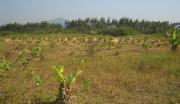 湖南长沙宁乡县103亩综合用地整体转让