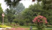 武陵源城市植物公园项目bob体育app官方下载