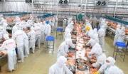 武汉屠宰深加工肉制品项目招商