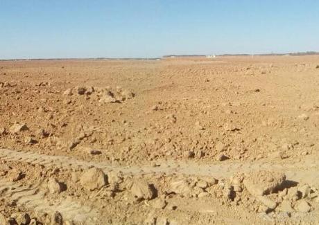 陜北榆林沙漠土地出租實景圖