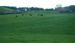 农牧与食品