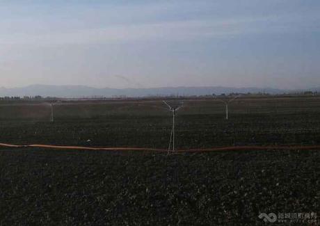 内蒙古鄂尔多斯市达拉特旗5000亩土地转包实景图