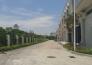 湖南长沙岳麓区98亩工业用地及高标准仓库转让实景图