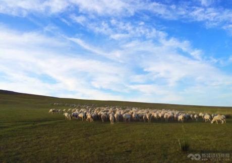 草原文化生态旅游