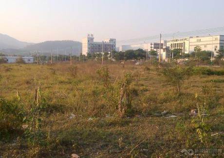 惠州博罗20000平工业地皮出售(国有证件)实景图