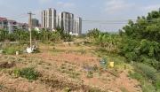 广西南宁青秀区柳沙第三产业用地合作开发项目