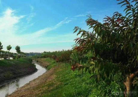 升升生态农场旅游项目招商实景图