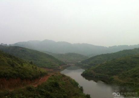 广东肇庆怀集1000亩山地整体转让