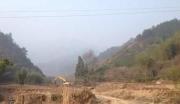 【转让】浙江杭州桐庐县3700亩山林地!