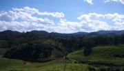 西双版纳勐海县农用地转让