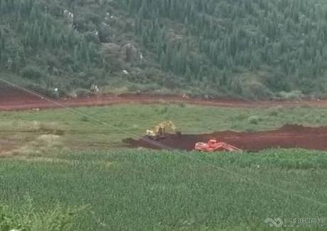 云南丽江1000亩林地紧急转让实景图