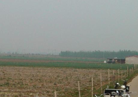 转让山东青岛莱西市50亩优质蔬菜基地
