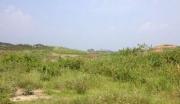 急!广东湛江廉江市600亩荒山荒地转让