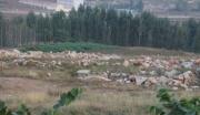 潍坊临朐县五井镇 34亩适合建厂、养殖荒山荒地低价转让