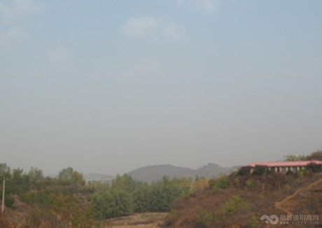 北京市密云县太师屯镇60亩荒山出租实景图