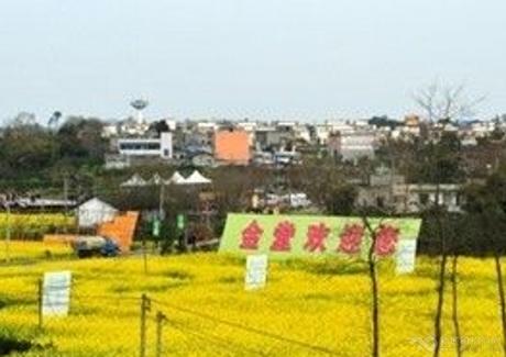 急!成都金堂县工业地转让实景图