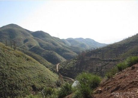广东清远市阳山县2300亩荒山荒地转让